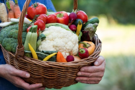 Italian Organic Food Market