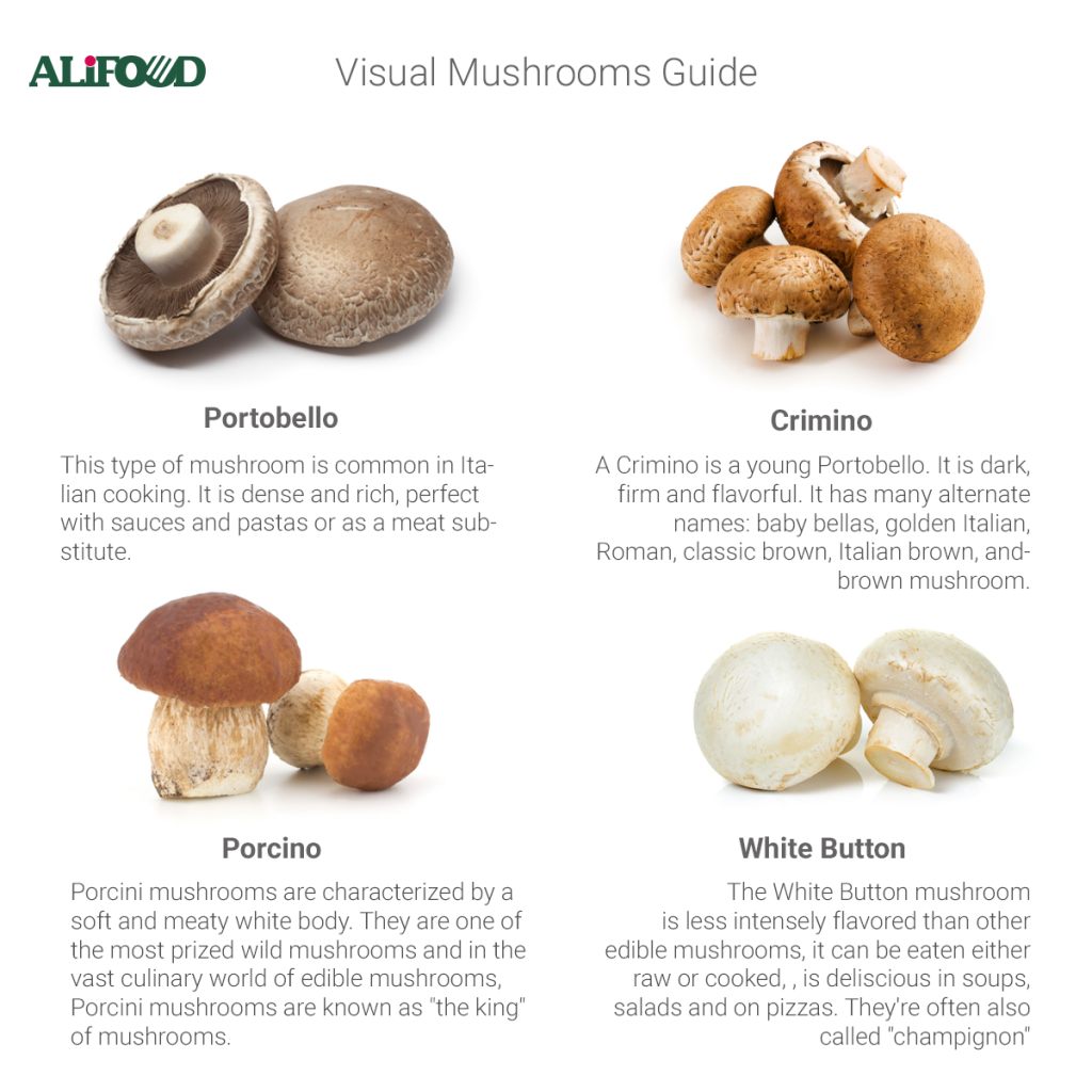 infographic mushrooms guide
