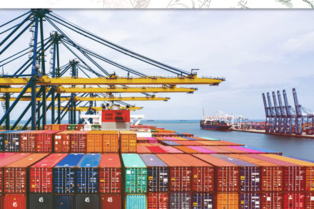 INTELLIGENT LOGISTICS SOLUTION: GROUPAGE SHIPMENTS